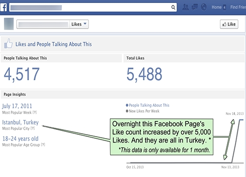Facebook fraudulent Likes Page